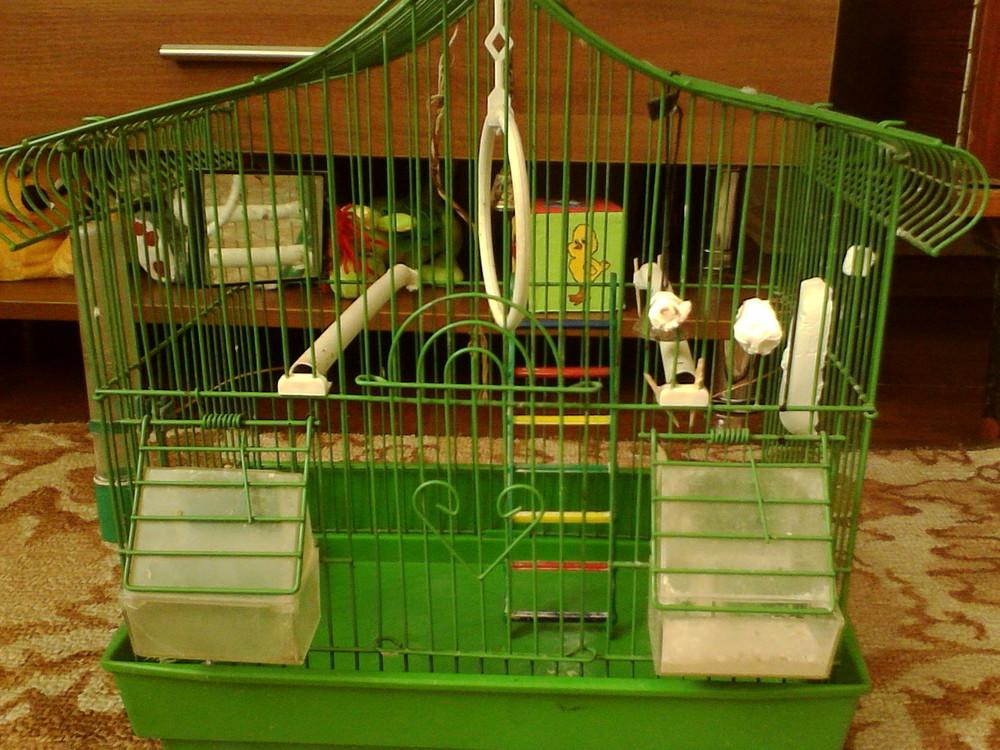 Аксессуары для клетки попугая