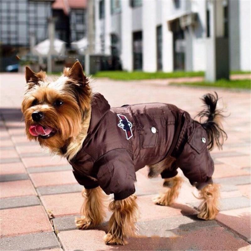Одежда для животных интернет магазин на алиэкспресс