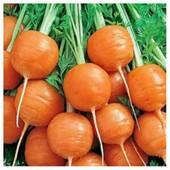 Морковь Парижский рынок скороспелая 200+ семян