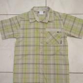 На 10-12 лет. Фирменная рубашка Columbia, не сєконд.