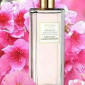 Туалетная вода women's collection delicate cherry blossom, духи