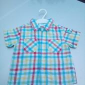 Стоп!!,фирменная красивая яркая натуральная удобная рубашка