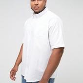Мужская белая рубашка с коротким рукавом Dimensions ( ворот 42/43)