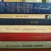 Одним лотом. 13 книг б/у. Смотрите все лоты.