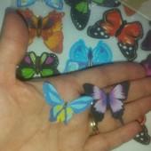 Декор стен.Набор ярких цветных бабочек.6 шт.