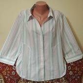 рубашка пог. 62