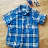 Рубашечка с коротким рукавом 104-110 УП 15%, НП 5% скидка!