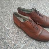 Мужские туфли MC Neal