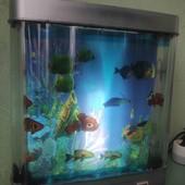 ночник рыбки в аквариуме