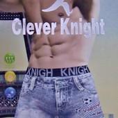 "Лот - 1 пара трусов (1 шт.)! Мужские трусы ""Clever Knight"". Размеры: 50, 52."