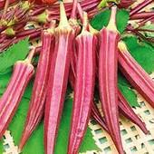 """Бамия """" Алабама"""". Красота и польза. Попробуйте вырастить новинку!!! 20 шт семян. До 2025"""