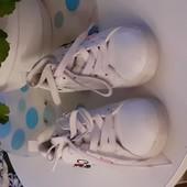 Коассные кеды, макасины кроссовки