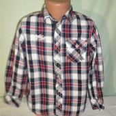 Новая рубашка на 6лет рост 116