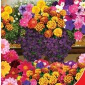 Семена Цветочной смеси Цветущий балкон (1г). Яркие однолетние.