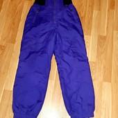 Женские лыжные горнолыжные сноуборд штаны
