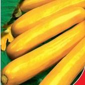 Цукини Золотника. Раннеспелый, урожайный сорт с яркими плодами.