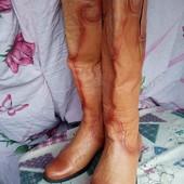 Сапоги козаки натуральная кожа деми