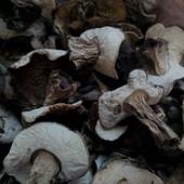 Сухі гриби білі