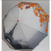Жіноча парасоля автомат Flagman осінь в Парижі . Зонт женский автомат в коробке