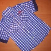 Рубашка Primark. На 3-4 года, на рост 104