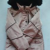 Роскошная деми курточка 4-6л
