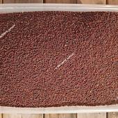 Горчица черная семена на сидерат, на масло, на специи, на микрозелень ( микрогрин) . Лот 1 кг.